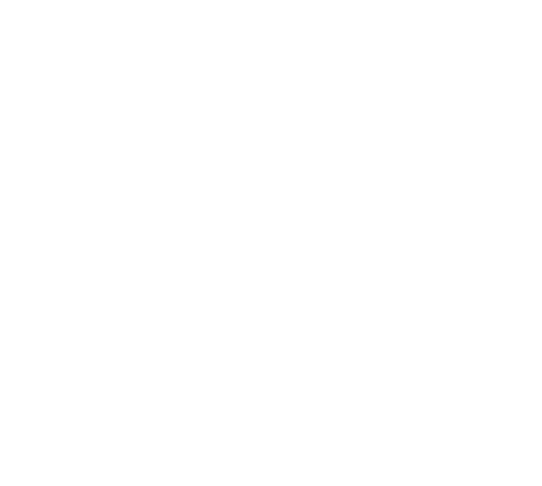 Australasian Brain Stimulation Society